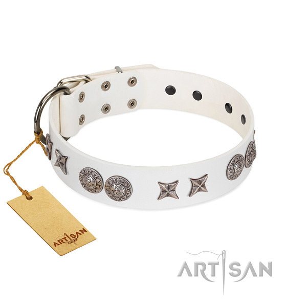 Full grain natural leather collar with designer embellishments for your canine