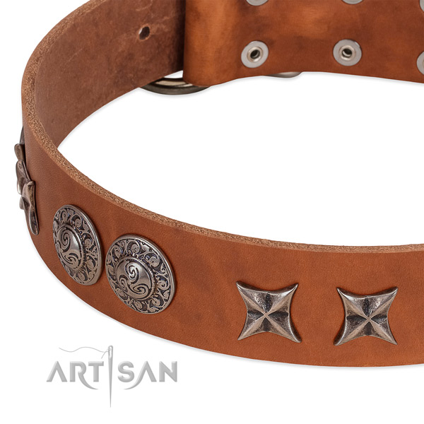 Top notch genuine leather dog collar handcrafted for your pet