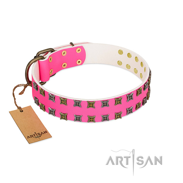 Full grain leather collar with significant adornments for your dog