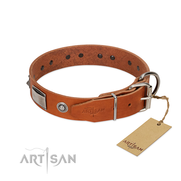 Designer natural leather collar with decorations for your four-legged friend