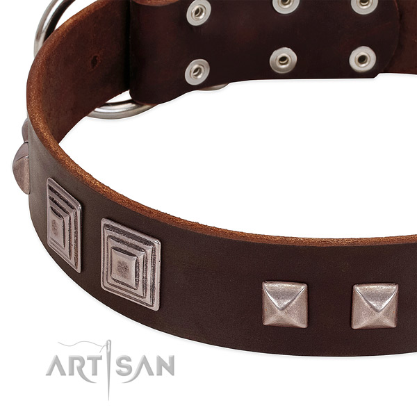 Rust resistant D-ring on genuine leather dog collar for comfortable wearing