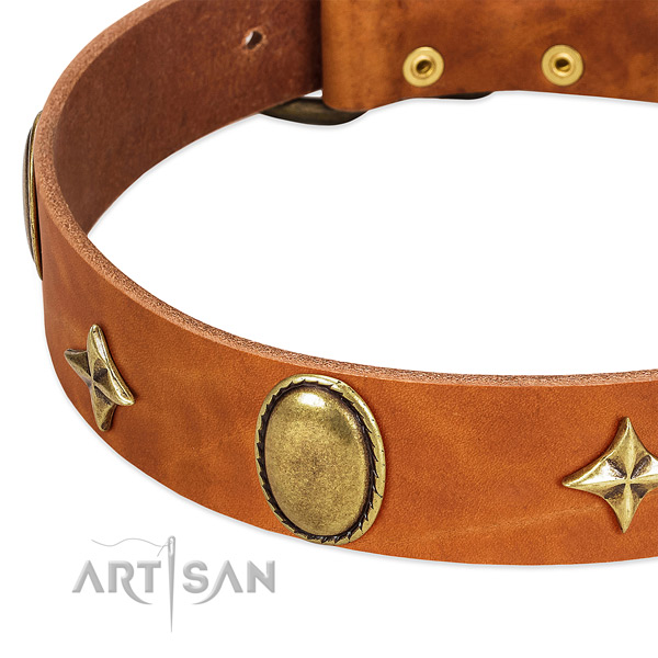 Top notch leather dog collar with rust-proof fittings