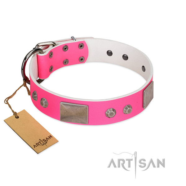 Corrosion resistant fittings on full grain leather dog collar for comfy wearing