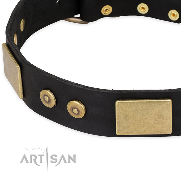 Strong adornments on leather dog collar for your pet