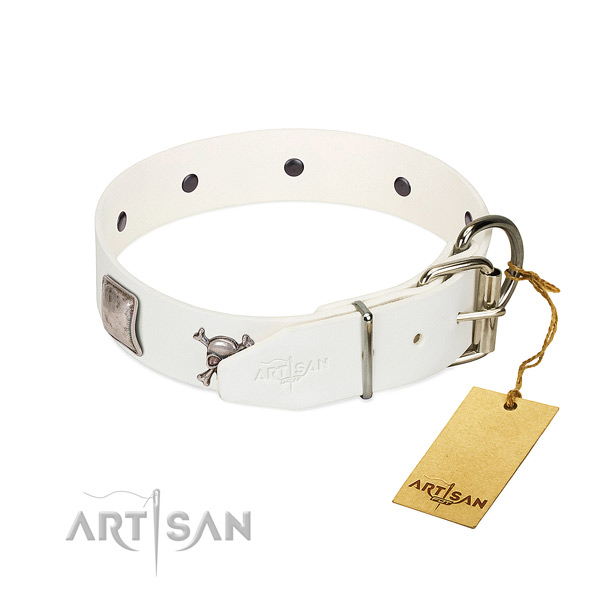 Designer full grain genuine leather dog collar with durable decorations