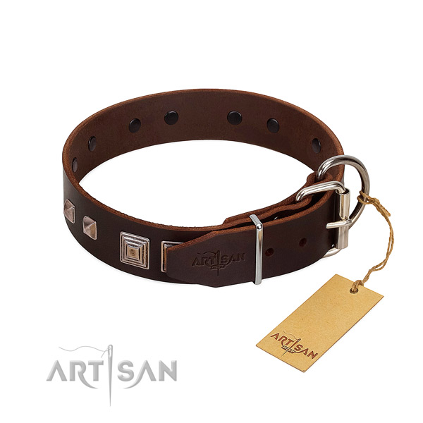 Walking full grain natural leather dog collar with exquisite decorations
