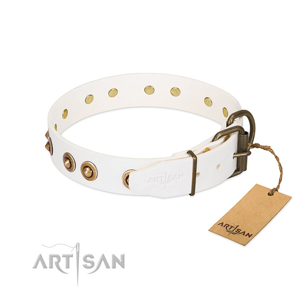 Reliable studs on natural leather dog collar for your canine