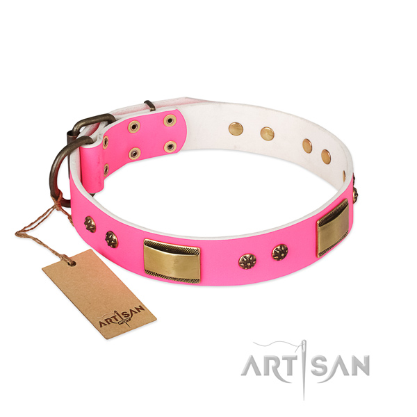 Impressive natural genuine leather collar for your canine