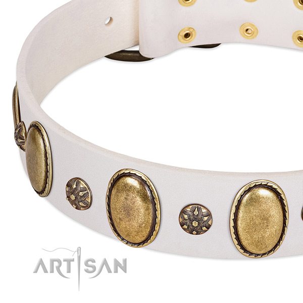 Easy wearing gentle to touch full grain natural leather dog collar with embellishments