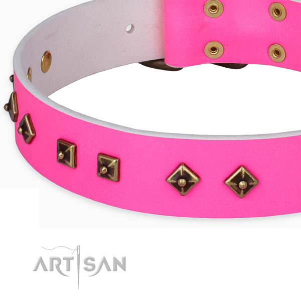 Handmade natural leather collar for your stylish doggie