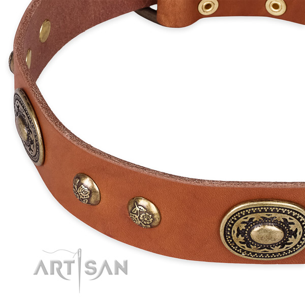 Impressive full grain natural leather collar for your beautiful four-legged friend