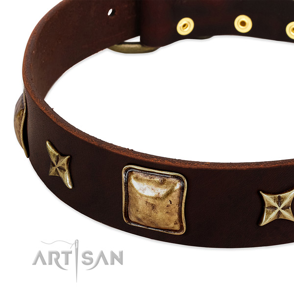 Reliable hardware on full grain natural leather dog collar for your four-legged friend