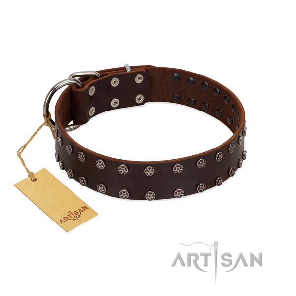 Easy wearing full grain natural leather dog collar with top notch decorations