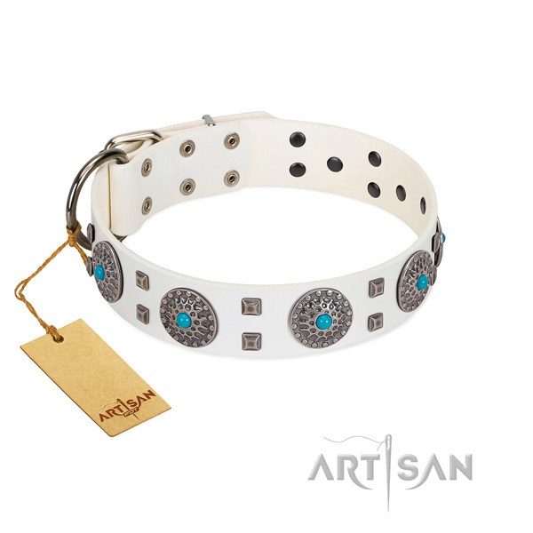 Comfortable wearing genuine leather dog collar with inimitable studs