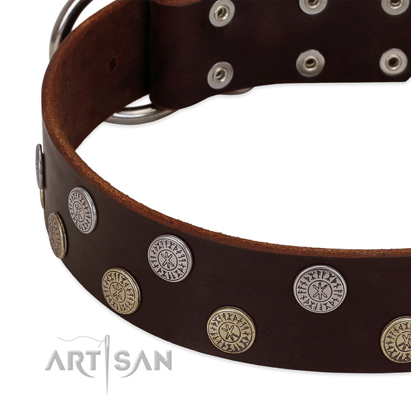 Top notch genuine leather collar for fancy walking your pet