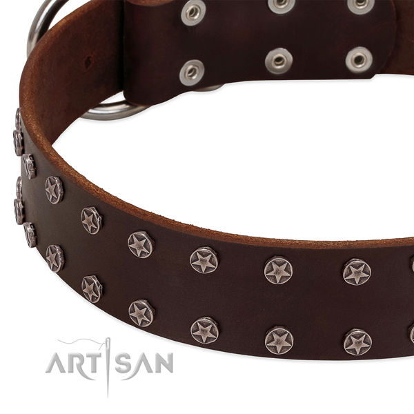 Reliable natural leather dog collar with adornments for your dog