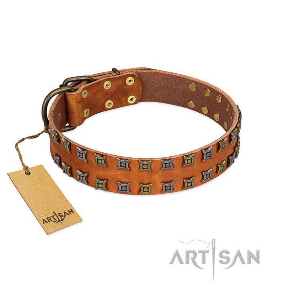 Strong full grain natural leather dog collar with studs for your doggie