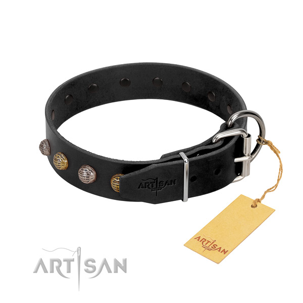 Adorned full grain leather dog collar with reliable traditional buckle