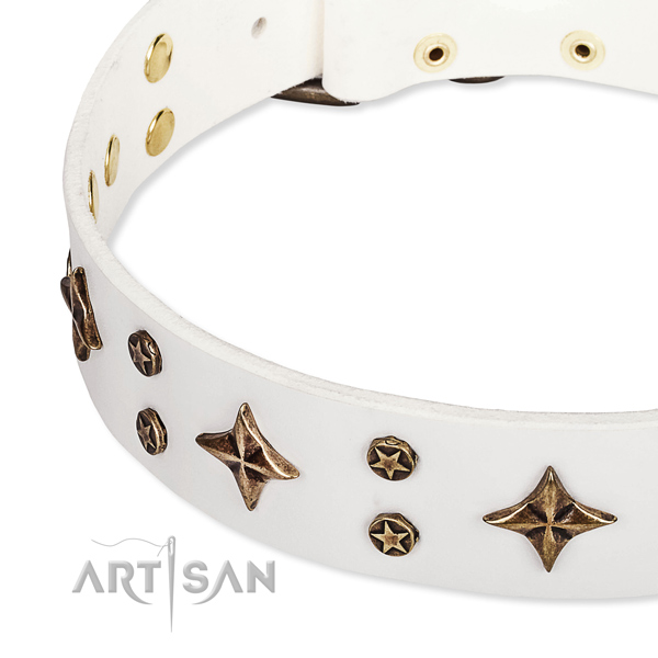 Comfortable wearing adorned dog collar of durable leather