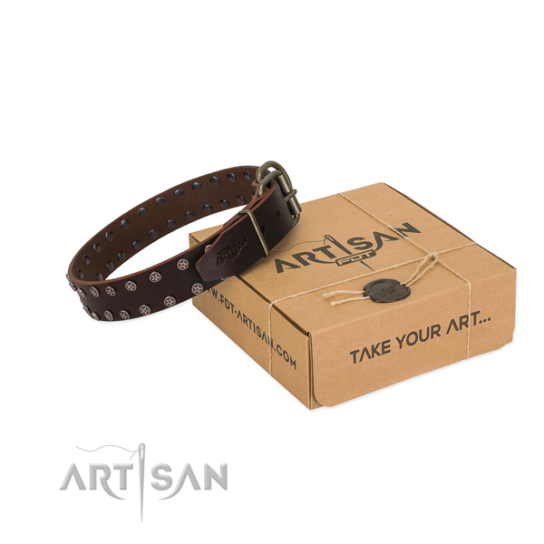 High quality full grain leather dog collar with embellishments for your handsome canine