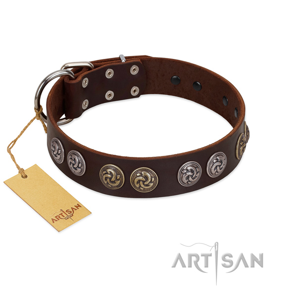 Durable traditional buckle on leather dog collar for walking