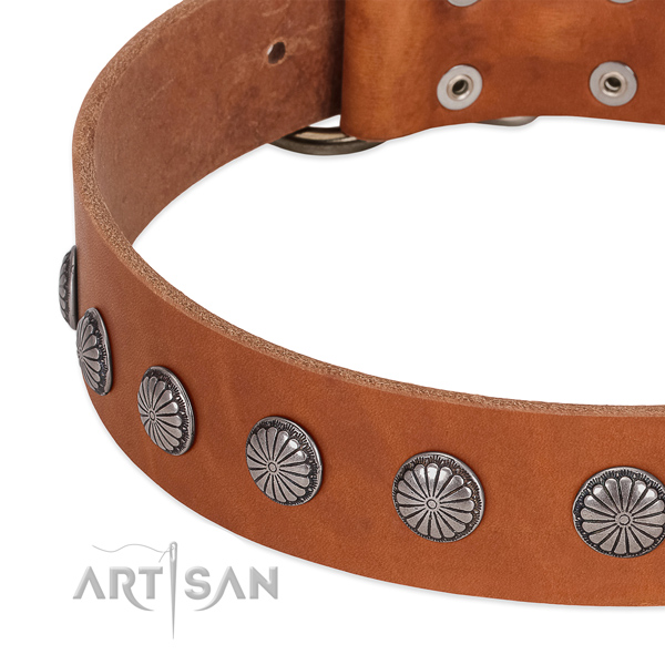 Top notch genuine leather dog collar with embellishments for walking