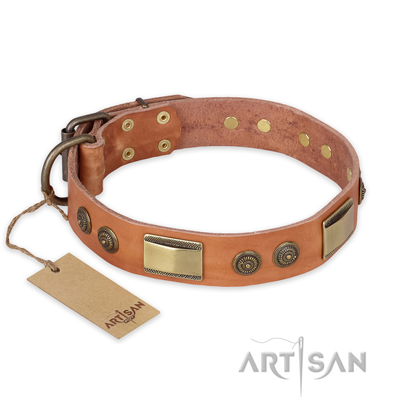 Unusual natural genuine leather dog collar for stylish walking
