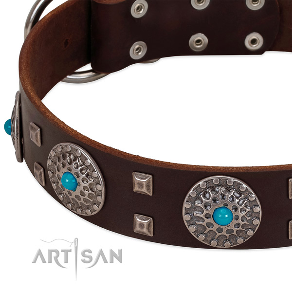 Best quality full grain leather dog collar with trendy adornments
