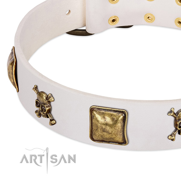 Walking full grain genuine leather dog collar with exceptional embellishments