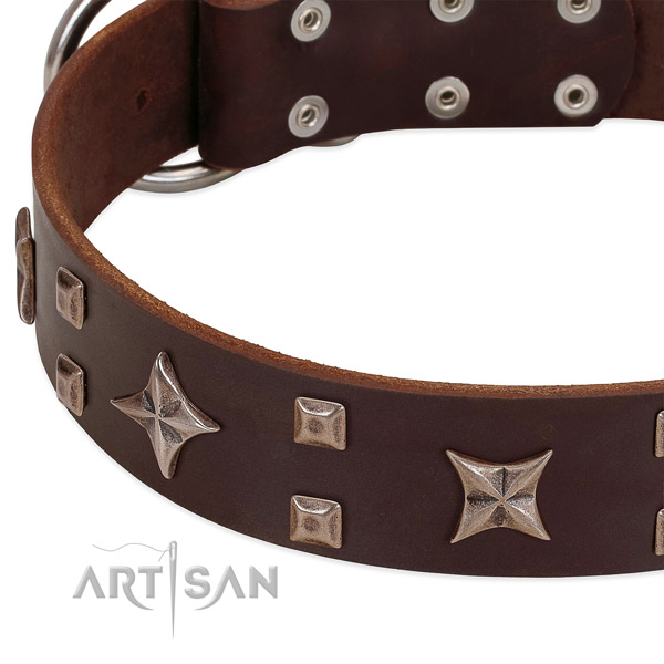 Strong fittings on full grain leather collar for basic training your dog
