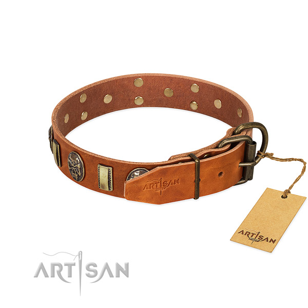 Rust resistant fittings on full grain leather collar for walking your pet