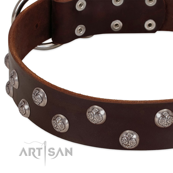 Genuine leather dog collar with strong fittings and embellishments