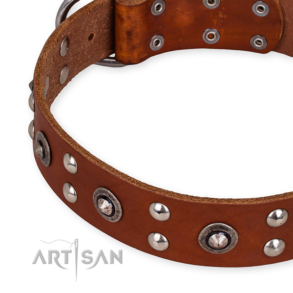 Full grain natural leather collar with rust resistant buckle for your impressive four-legged friend