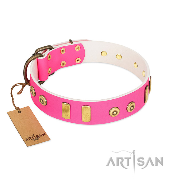Genuine leather dog collar with stunning embellishments for comfy wearing
