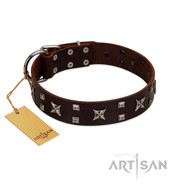 Reliable genuine leather dog collar with adornments for daily use
