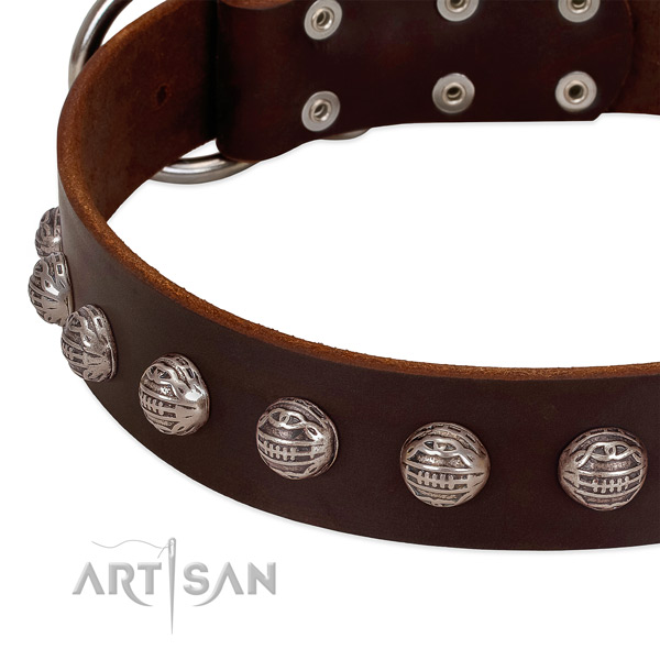 Top notch natural leather dog collar with durable embellishments