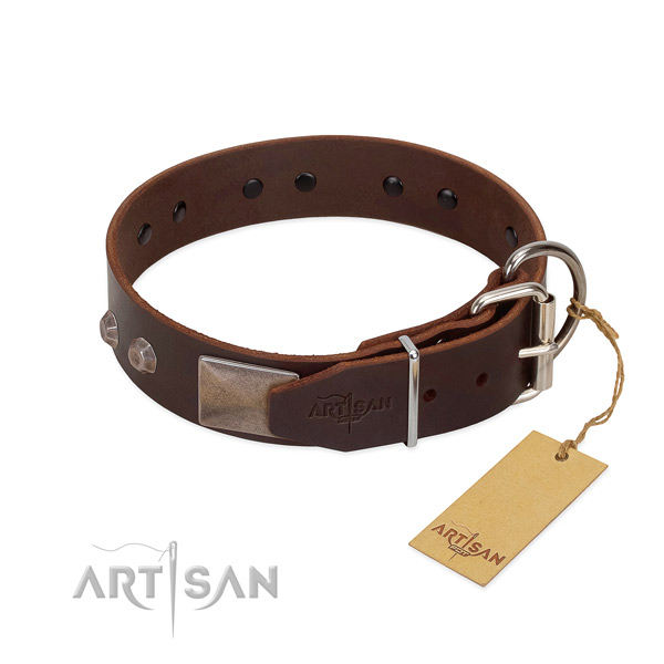Extraordinary leather dog collar for walking your four-legged friend