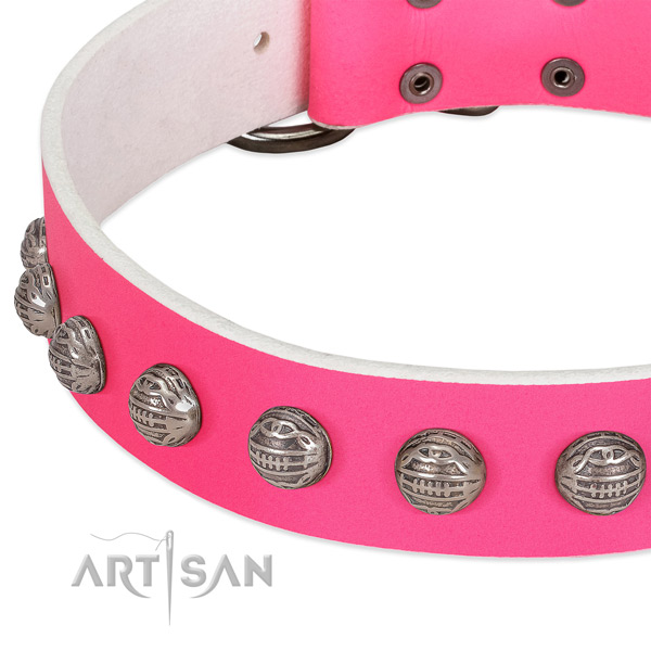 Everyday walking genuine leather dog collar with fashionable decorations