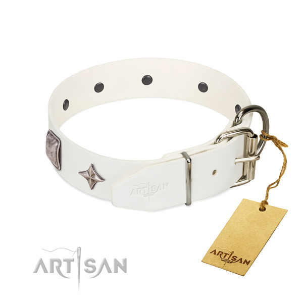 Top-notch full grain leather dog collar with amazing adornments