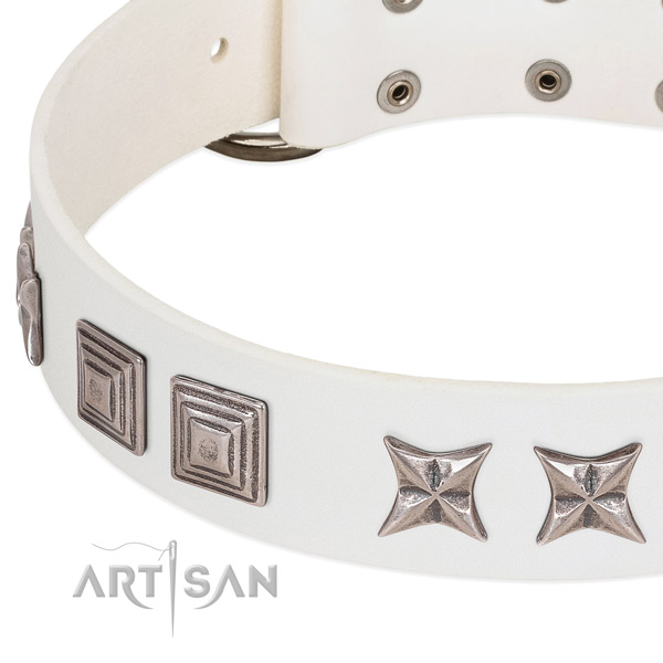Stylish walking genuine leather dog collar with impressive studs