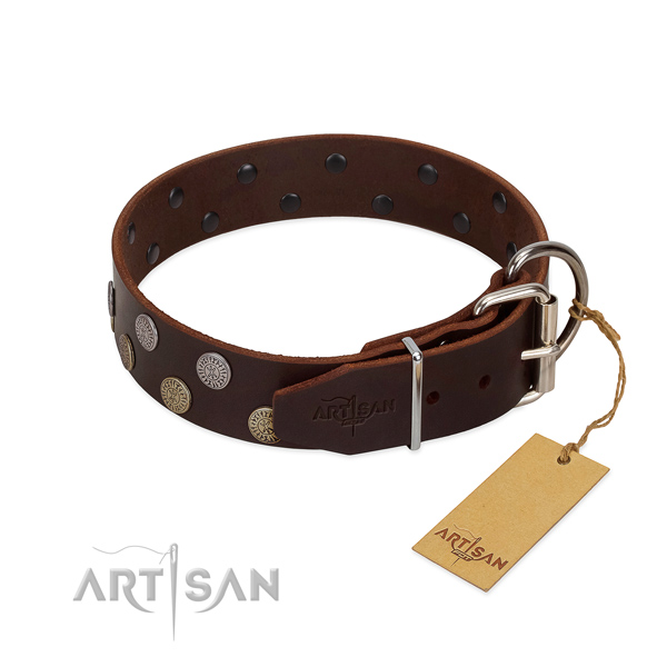 Corrosion proof buckle on genuine leather dog collar for everyday use