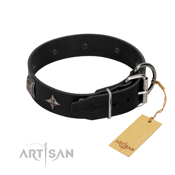 Soft to touch full grain natural leather dog collar with adornments for comfortable wearing