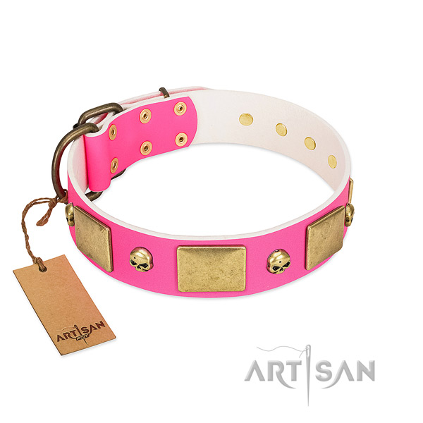 Flexible full grain leather collar with rust resistant studs for your pet