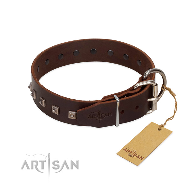 Stylish genuine leather collar for your four-legged friend