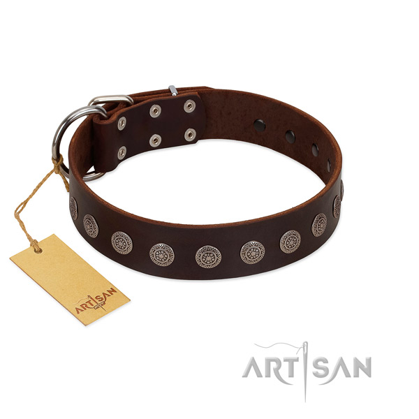 Fashionable embellished full grain natural leather dog collar