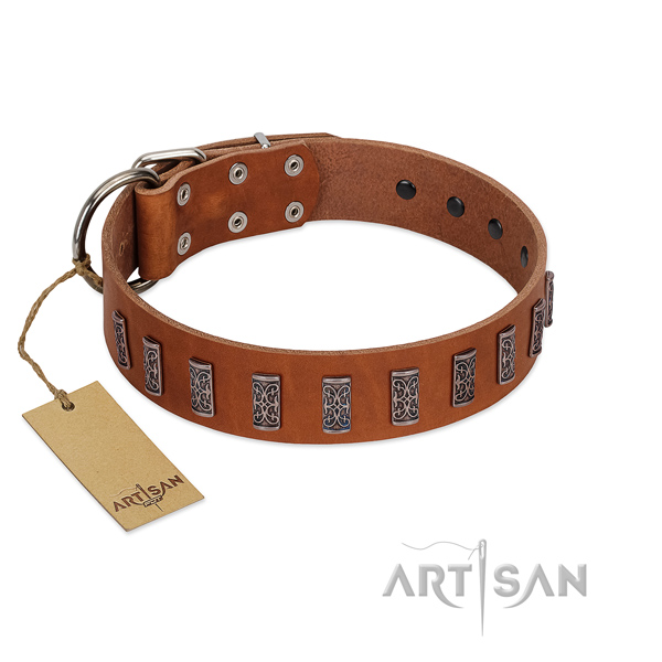 Top notch natural leather dog collar with reliable traditional buckle