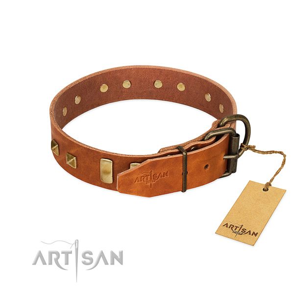 Quality leather dog collar with rust-proof fittings