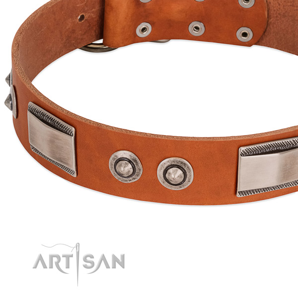 Amazing full grain genuine leather collar with studs for your doggie