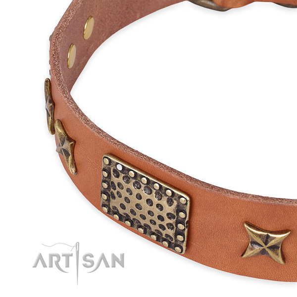 Full grain natural leather collar with rust-proof hardware for your impressive dog