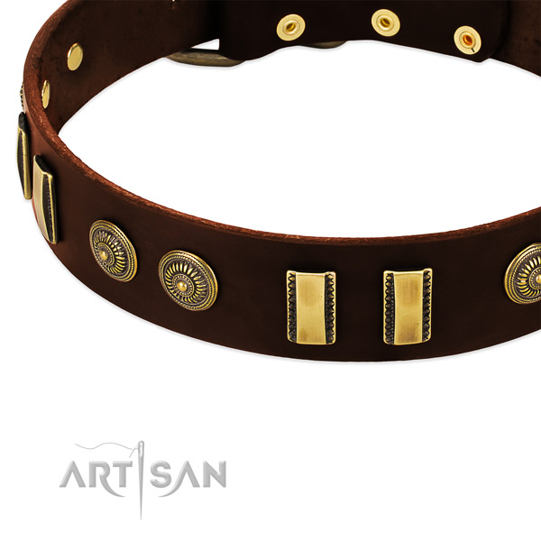 Corrosion resistant embellishments on natural leather dog collar for your doggie